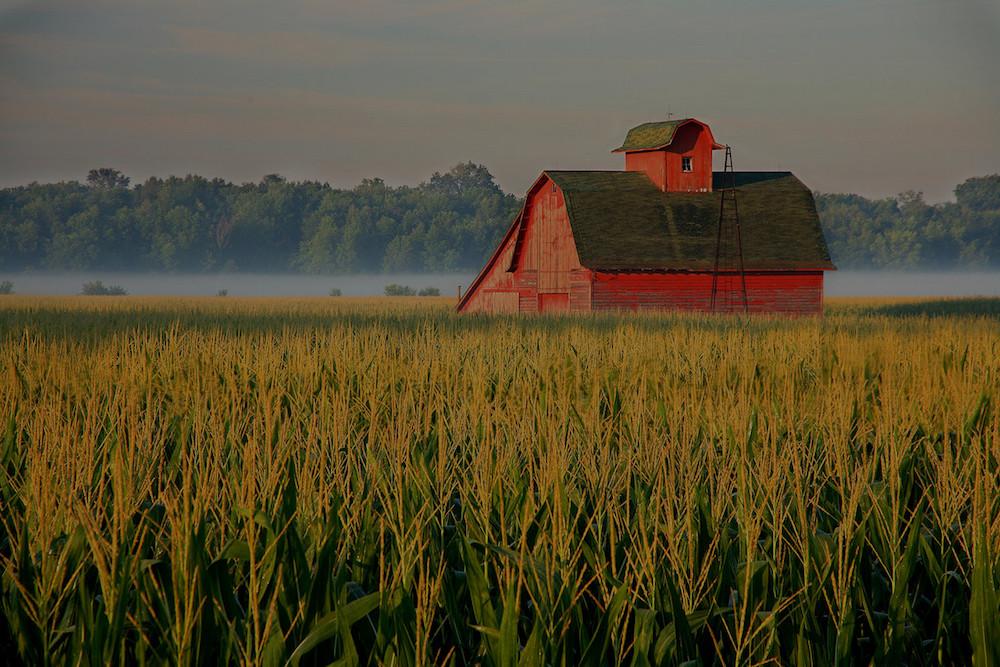 farm and crop insurance Salisbury, NC